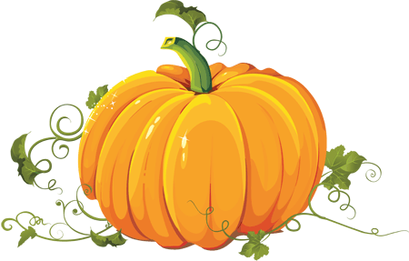 Польза и полезные свойства тыквы