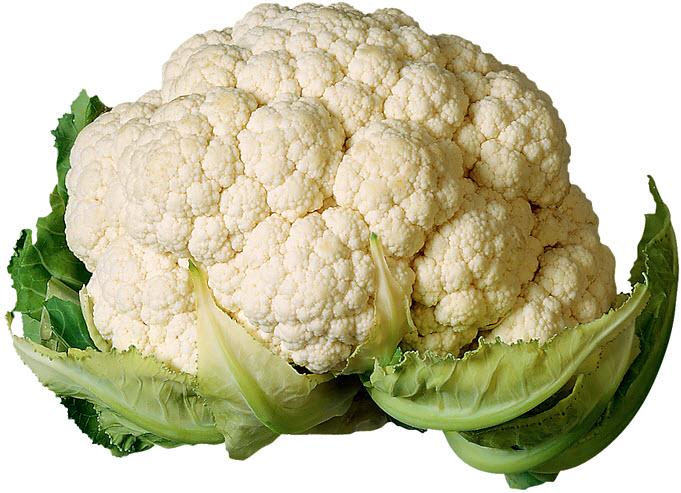 Польза и вред цветной капусты