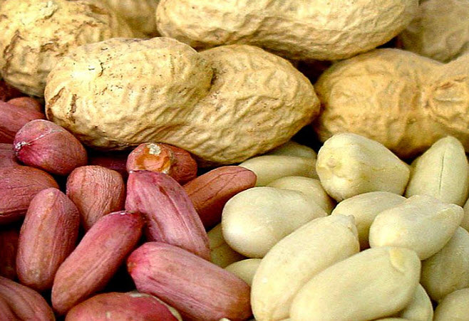 Вред и противопоказание арахиса для человека