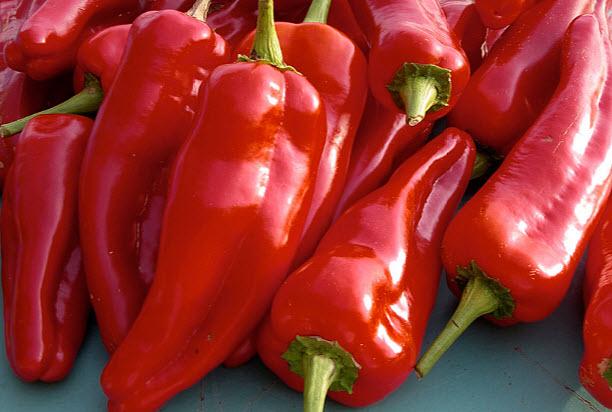 Вред и противопоказания болгарского перца
