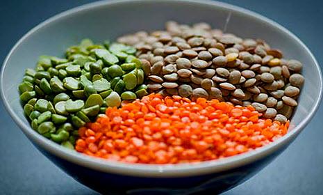 Чечевица: польза и вред, калорийность, полезные и лечебные свойства, противопоказания для мужчин и женщин