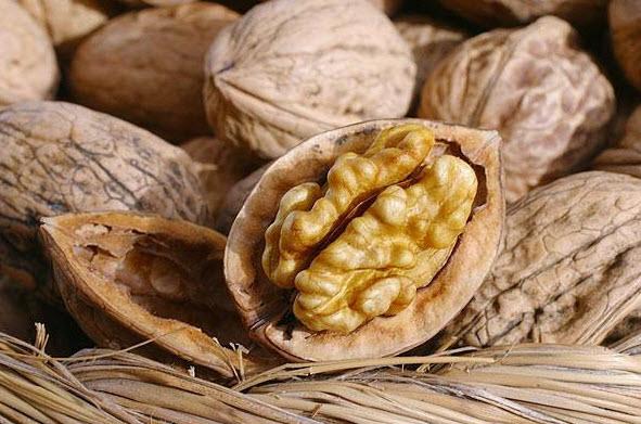 Польза и вред грецкого ореха при беременности