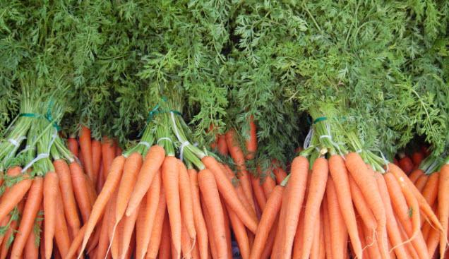 Вред и противопоказание морковной ботвы для человека
