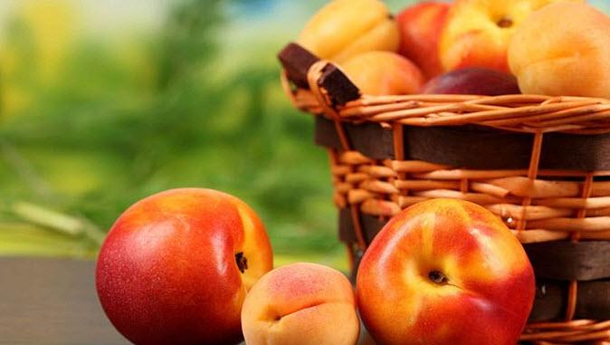Польза и вред нектаринов при беременности и грудном вскармливании