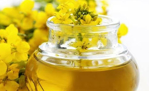 Как лучше всего употреблять рапсовое масло в пищу?