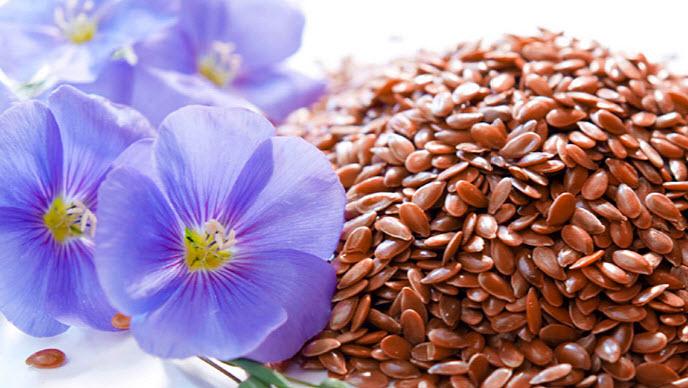 Польза семян льна для женщин