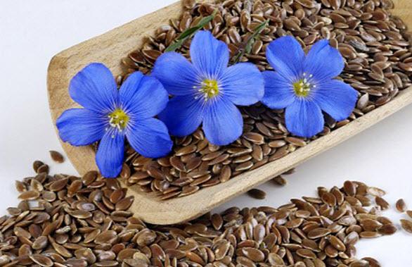 Вред и противопоказание семян льна для человека